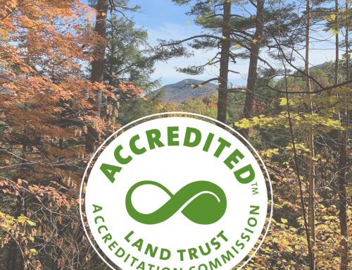Lake Placid Land Conservancy Earns National Recognition