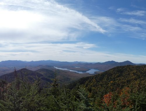 Stakeholder Notification and Public Notice:  Lake Placid Land Conservancy applies for accreditation and seeks public comment